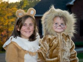 costumes de lion