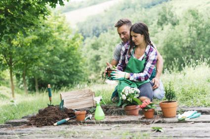 L'homme et la femme rempotent les plantes s'amusant