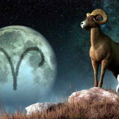 The ram flying through the sky.