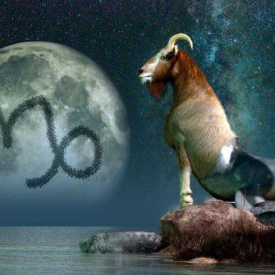 Capricorn sea goat and moon