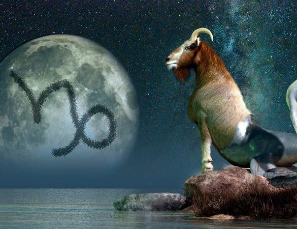 Sea Goat Zodiac Sign Capricorn
