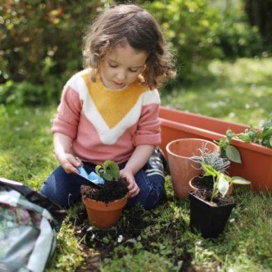 little girl potting plants