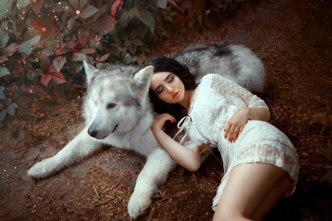 Girl with dark hair is lying on gray-white forest wolf